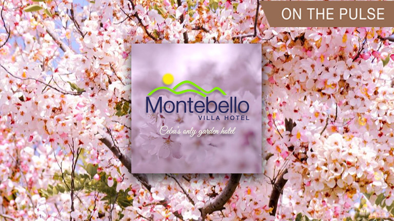 Montebello's cherry blossoms