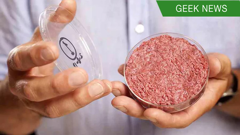 Lab-grown meat will replace real meat in the future