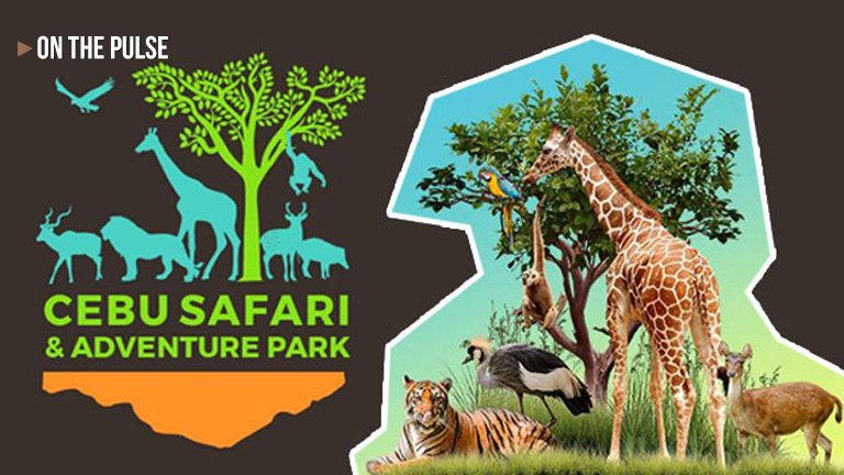 Cebu Safari Run on September 15